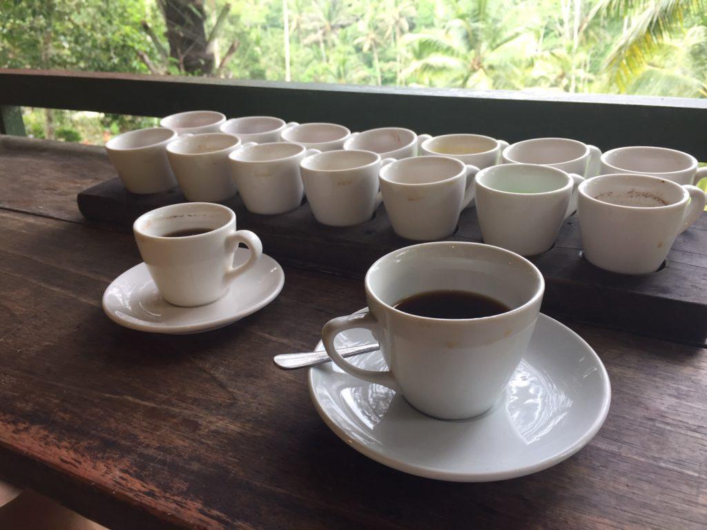 Kopi luwak : de duurste en lekkerste koffie uit Indonesië